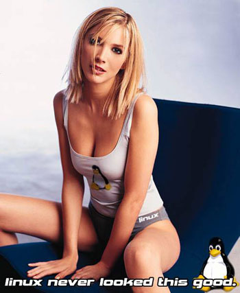 Random picture of sexy Linux girl that doesn't add value to the story.